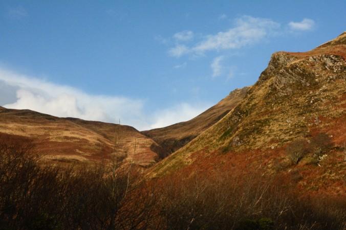 brown bracken hills