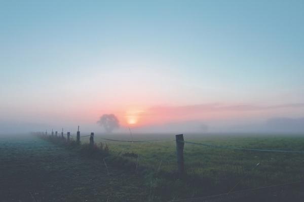 fog-dawn-landscape-morgenstimmung-163323
